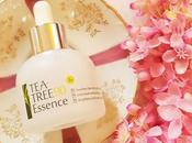 Goodble Acne Breakouts: Tree Essence Review