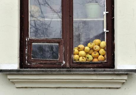 8 Things to know before you buy replacement windows