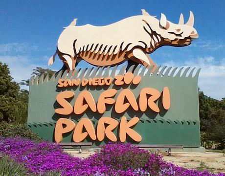Seven Best Things to Do for a Perfect Family Holiday in San Diego, California