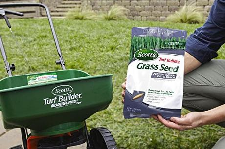 Tips For Looking After a Large Lawn
