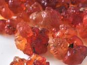 Peach Gleditsia Rice Sweet Soup 桃膠雪莲子糖水
