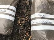 Product Review: Earthcycle Compost Soil Conditioner