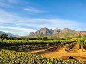Looking Best Wine Destinations Around World?