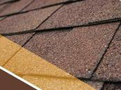 Protecting Your Roof Annual Inspections