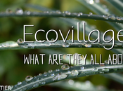 Ecovillages: What They About?