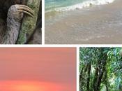 Travel Wishlist: Ultimate Beach Destinations
