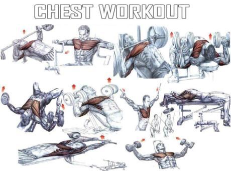 good chest workout  paperblog