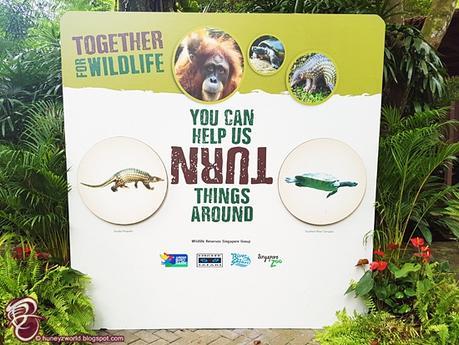 Help TURN Things Around For Wildlife #TogetherforWildlife