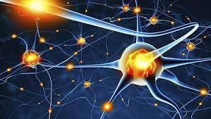 POEM: Neuron Fire