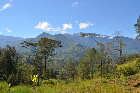 Want to Join a Trek Across Papua New Guinea for Conservation?