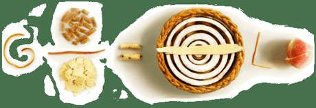 Pi Day ~ and celebrating the birth day of Albert Einstein