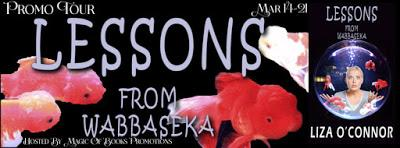 Promo Tour: Lessons from Wabbaseka by Liza O'Connor