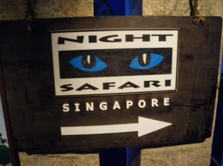 10 Best Family-Friendly Attractions in Singapore