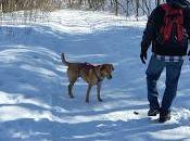 Final Winter Hike