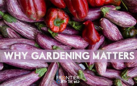Why Gardening Matters
