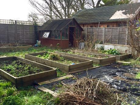 Restoring a Hampshire Garden – Chapter 1