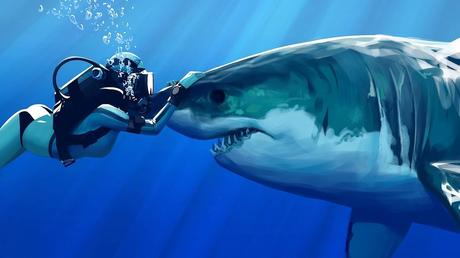 Image result for shark pictures