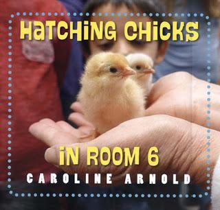 Further Reading about Chicks and Chickens