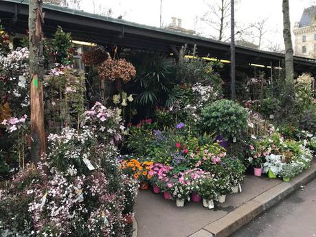 Marché aux fleurs revisited