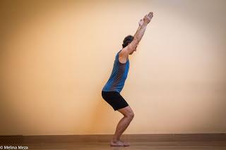 Featured Sequence: Mini Practice for Fig Leaf Forward Fold