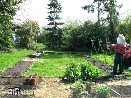 best tiller for small garden s small garden tiller reviews