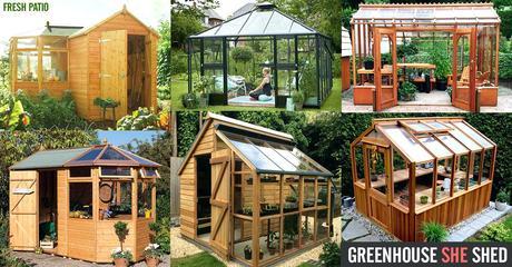 garden shed greenhouse d garden greenhouse shed 5 x 3m
