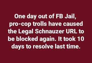 A lawsuit against Facebook -- revealing the identity of trolls who have attacked my blog -- might be a way to fight back and extract serious cash from thug cops