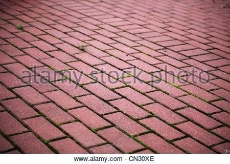 garden stone tiles natural stone garden tiles