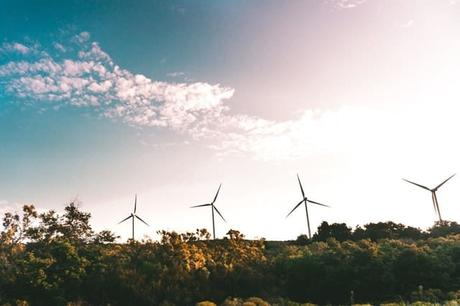 windmill-near-green-trees