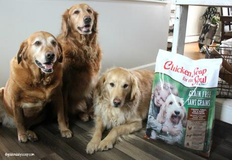 chicken soup for the soul healthy dog food