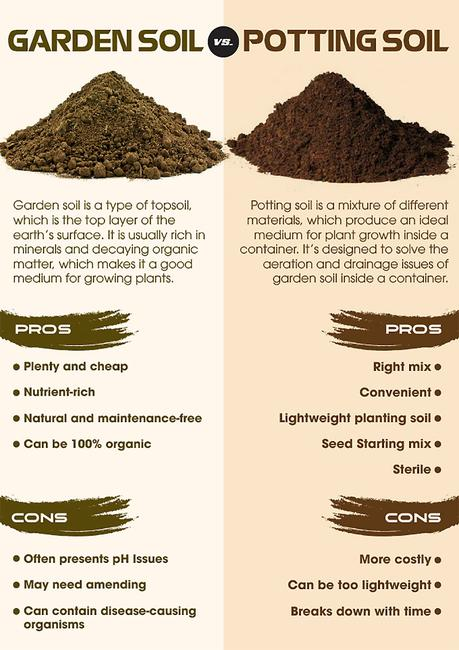 Garden Soil Vs Potting What S