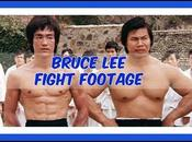 Bruce Fighting Style