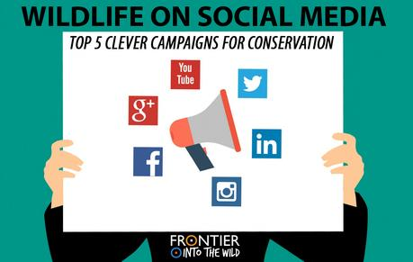 Wildlife on Social Media: Top 5 Clever Campaigns for Conservation