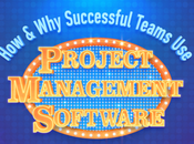 Successful Teams Project Management Software