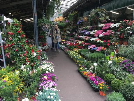 Déjà vu Marché aux Fleurs
