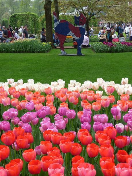 Visit Guide Keukenhof Tulip Gardens Holland