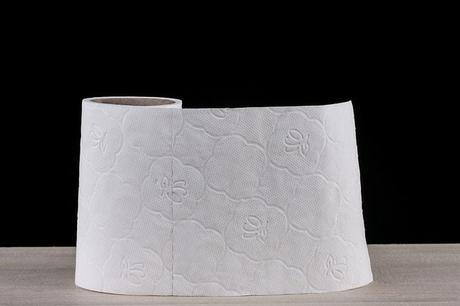 toilet-paper-white-soft-cleaning