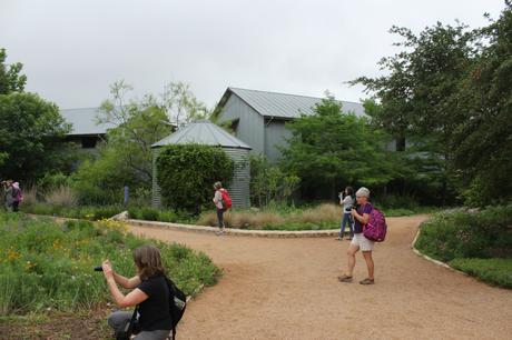 Lady Bird Johnson Wildflower Centre