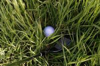 What New Golf Rules Mean for the Average Player