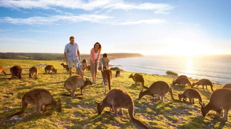 3 Best Reason Why Australia Is A Travel Heaven Place!