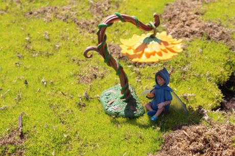 Flower Fairies Secret Garden: Miniature Garden Fairies