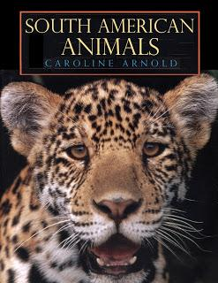 SOUTH AMERICAN ANIMALS, Now Available as a Kindle Book