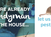 It's About Being Handyman Your HOME