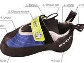 Anatomy Climbing Shoe