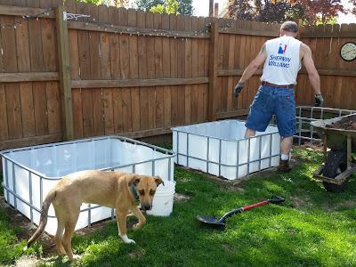 Backyard Chores