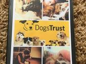 Update Dogs Trust Should Give This Worthy Cause