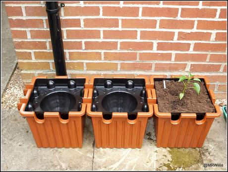 The Oasesbox irrigation system