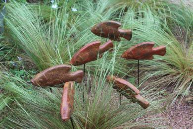 Jenny Stocker's garden