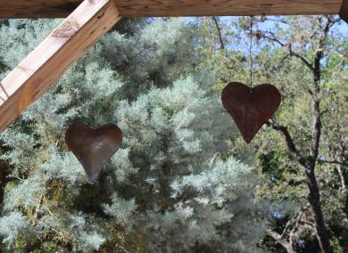 Pam Pennick's garden