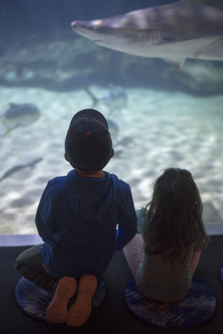 8 things to do with kids in Cleveland
